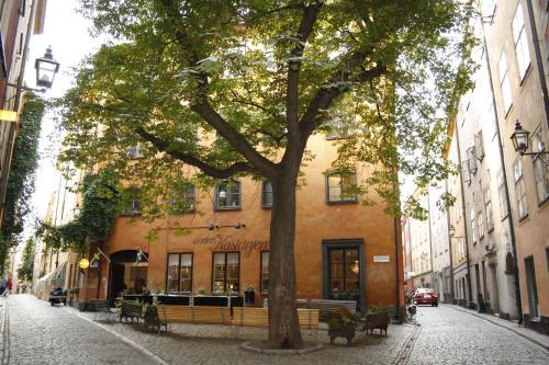 Castanea Old Town Hostel impression