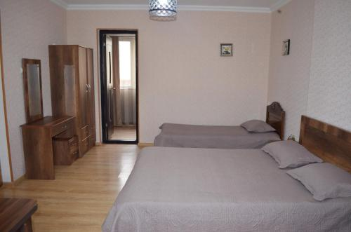Aleqsandra - Apartment - Borjomi