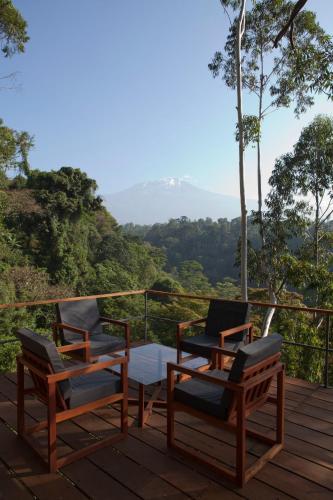 Фото отеля Kaliwa Lodge