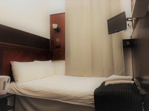Plaza London Hotel - image 11