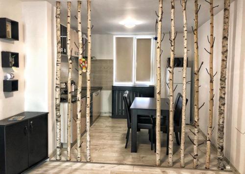 Apartament Nadia - Apartment - Piatra Neamţ