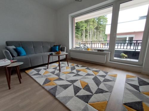 Apartman Bijela Bjelašnica - Apartment