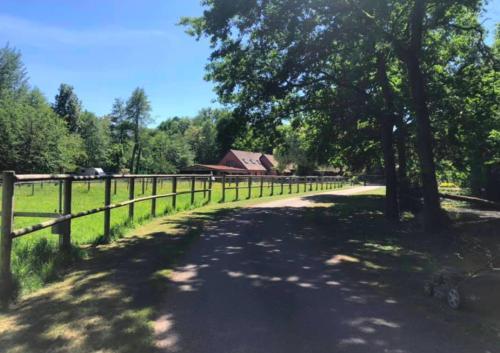 Gîtes du Tichweg - Location saisonnière - Colmar
