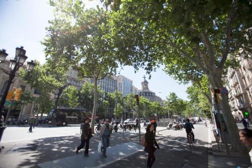 Paseo de Gracia Apartments PdG photo 43