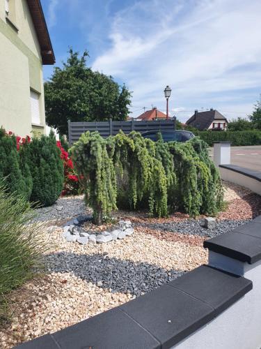 Suite-Airport-Basel - Apartment - Blotzheim
