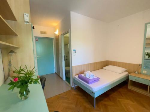 Hostel Spinut - image 4