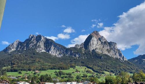Zentrale, ruhige Ferienwohnung mit herrlicher Aussicht - Apartment - Schwyz