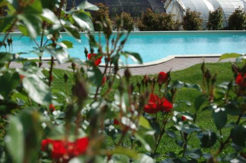 Le Serre Suites & Apartments - Accommodation - Moncalieri