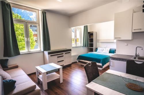 Studio apartma CENTER - Apartment - Zgornje Jezersko