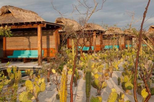 Carretera Federal Salina Cruz, Santigo Pinotepa Nacional KM 113, 71983 Puerto Escondido, Oaxaca, Mexico.