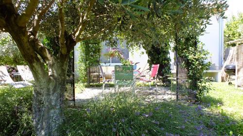 La Maison sous l'olivier - Accommodation - Morières-lès-Avignon