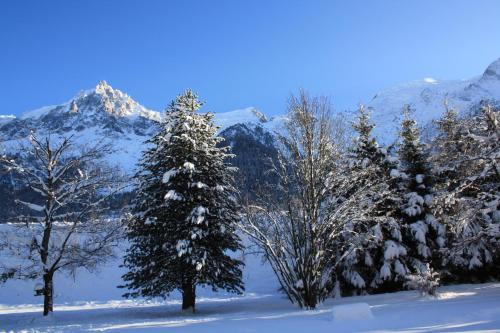 Le Paradis - Chalet - Chamonix