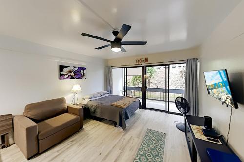 Exceptional Vacation Home in HILO condo - image 3
