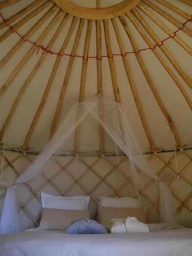 Mira Ceti Yurt B B In Sete France Wander