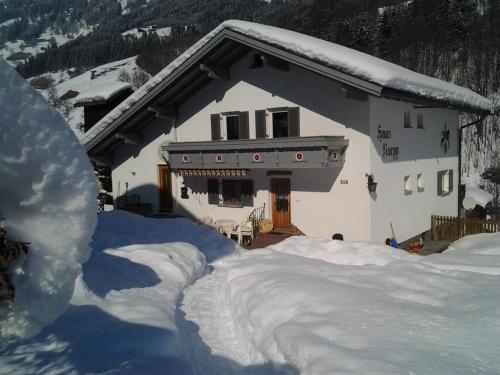 Haus Ruepp - Apartment - Silbertal