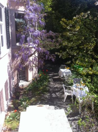 . Garden Studio Apartment Zürichberg