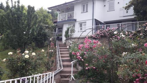 Villa Selma - Accommodation - Hadžići