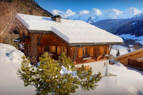 Quiet alpine chalet outdoor sauna & jacuzzi close to slopes - OVO Network - Chalet - Le Grand Bornand
