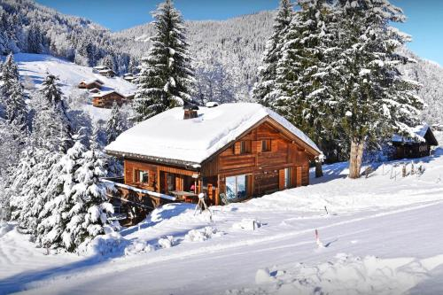 Great skiing on your doorstep - 4 star ski in ski out chalet - SnowLodge - Chalet - La Clusaz