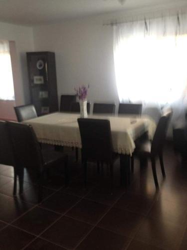 Vila Felicia - Accommodation - Borsa
