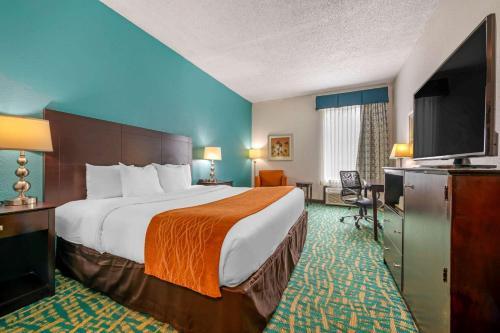 Comfort Inn & Suites Fort Lauderdale West Turnpike - image 5