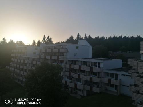 King apartament 1 - Apartment - Sankt Englmar