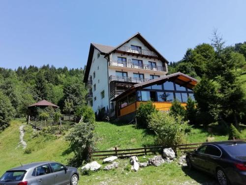 Vila Rina - Accommodation - Moieciu de Sus