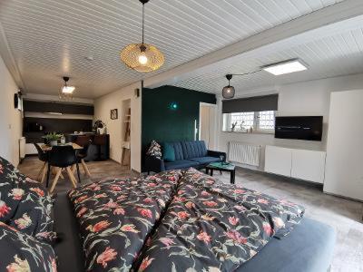 Ferienwohnung im Ferienhaus in der Rhön - Apartment - Bischofsheim an der Rhön