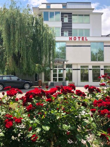 Hotel Royal - Photo 4 of 41