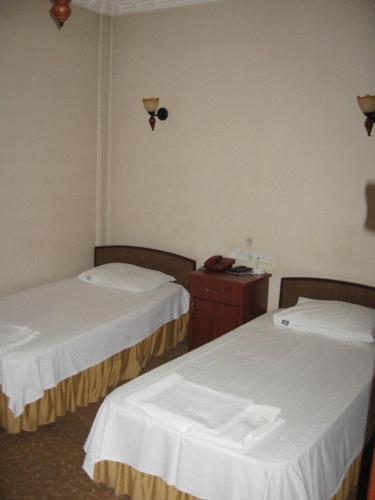 . Hotel Atasayan