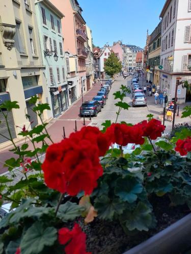 La Provence Suites - Location saisonnière - Colmar