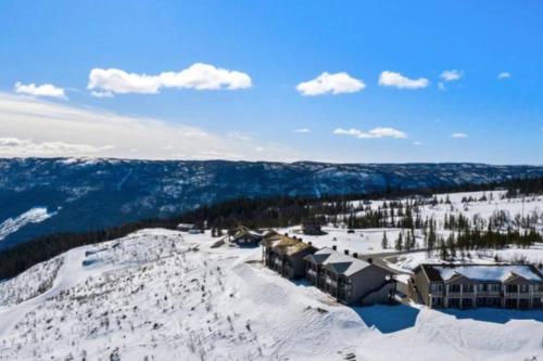 Ski inn/Out i ny leilighet med flott utsikt og fine turmuligheter - Apartment - Gol