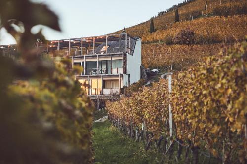 Haller Suites & Restaurant Brixen