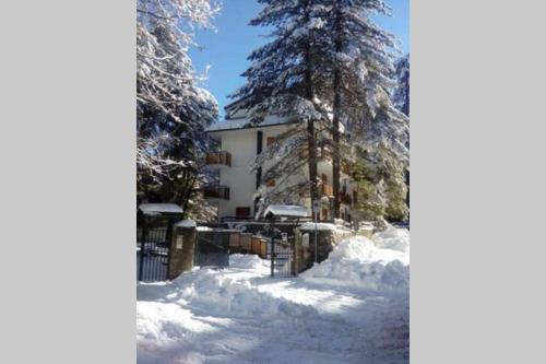 LA SCALETTA BLU - grazioso appartamento a Camigliatello - Apartment - Camigliatello Silano