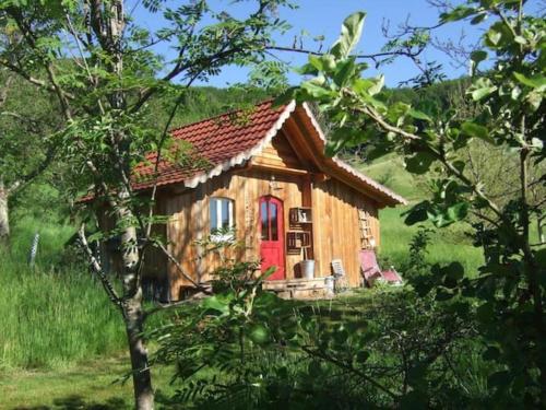 Sonniges-naturnahes-Schwarzwald-Ferienhaeuschen