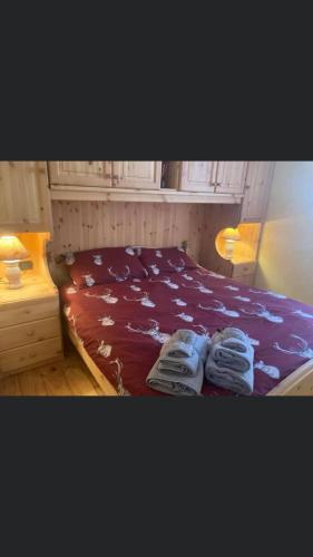 Residenze Ca del bosco Piancavallo - Apartment