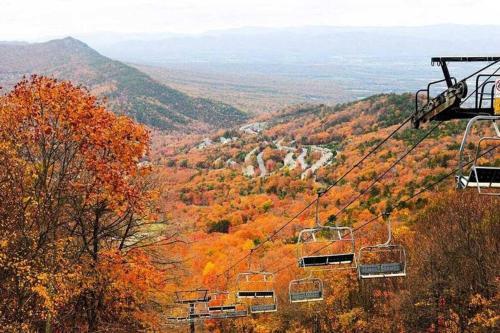 Massanutten Resort - Hiking, Skiing, Swimming, Golfing - Chalet - McGaheysville