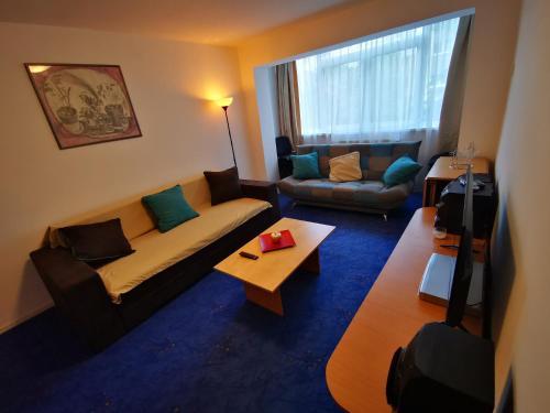 Apartament langa castan - Apartment - Azuga