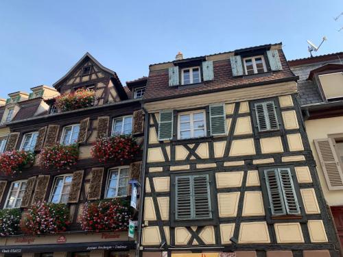 Bretzel 2 - Location saisonnière - Colmar