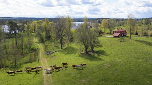Villa Näs - modernt boende i lantlig miljö - Accommodation - Mullsjö