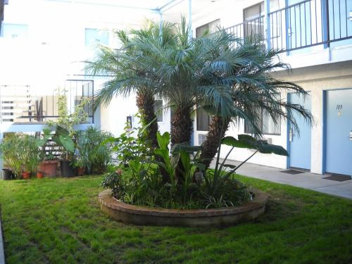Palms Courtyard Inn - Westminster, CA 92683