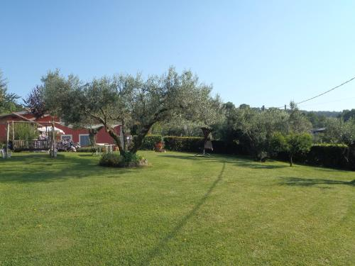 La Terrazza sul Lago - Trevignano Romano - prenotazione on-line ...