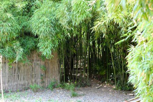 Фото отеля Bamboo Khutor Guest house