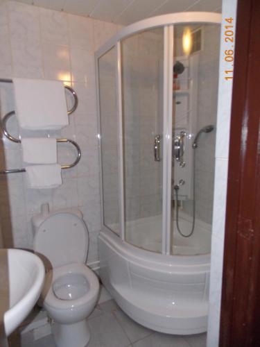 Фото отеля Nikopol Hotel