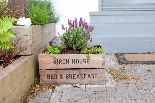 Birch House 31 Icen Road Weymouth DT3 5JL, England.