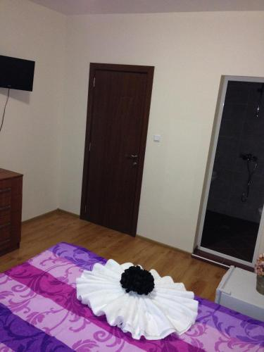 Guest House Natali room photos