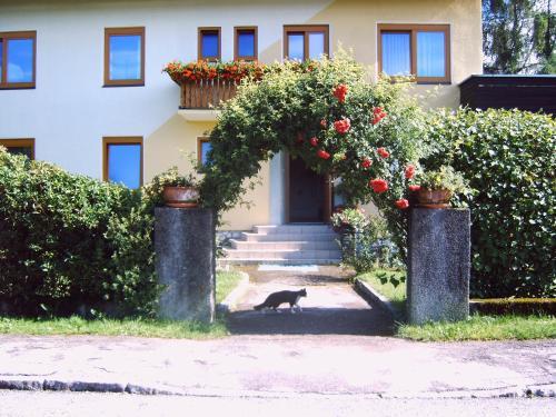 Hotel-overnachting met je hond in Gästehaus Margit Miklautsch - Faak am See