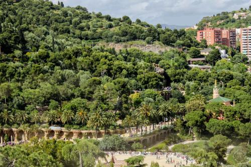 Large Guell Apartments photo 31