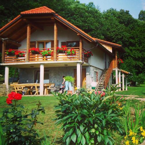 Vineyard Cottage Planinc - Hotel - Črnomelj