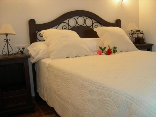 Superior Double or Twin Room Sa Vinya d'en Palerm 18